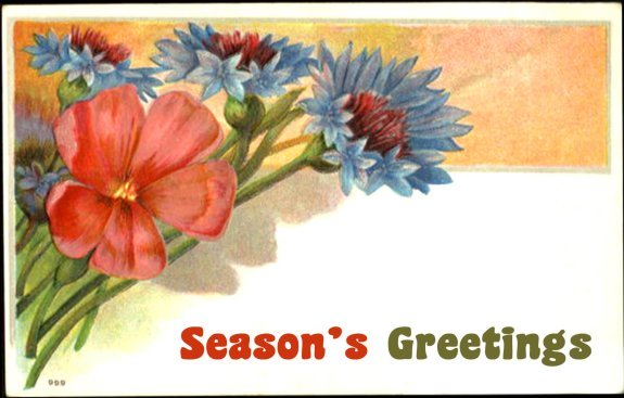 Vintage Christmas greeting card - drawing of flowers - text: Season's Greetings