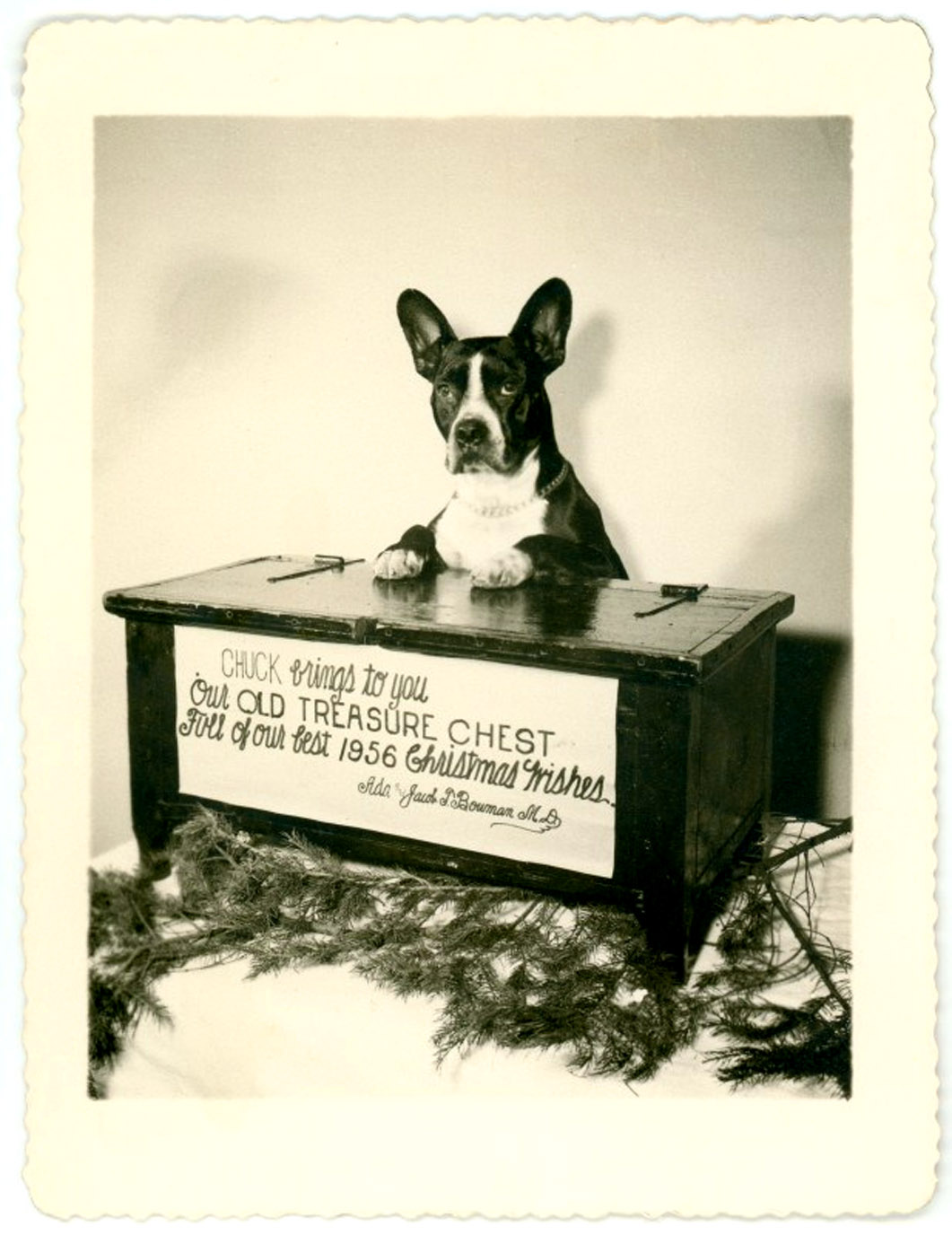 chuk the dogs treasure chest fun old xmas card
