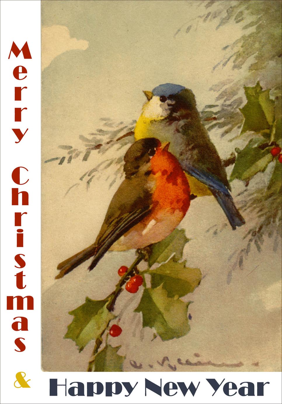 Vintage New Year and Christmas greeting card with 2 colorful winter birds