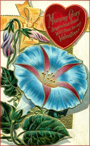 Beautiful Valentine greeting cards: Vintage picture of blue trumpet flower and red heart.