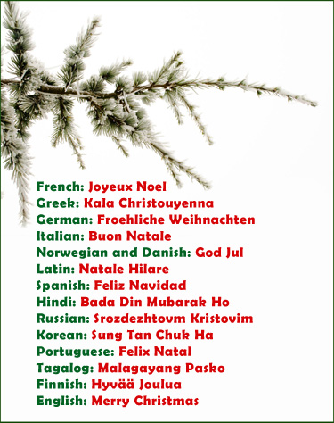 Saying merry Christmas in many different languages.