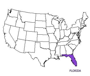 Florida State Motto Nicknames And Slogans - Us map with florida highlighted