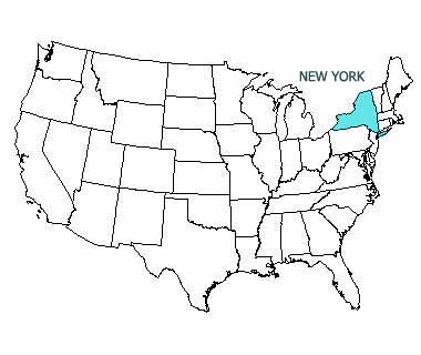 USA map with New York highlighted