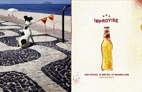 Brahma beer ads - Improvise - funny picture of dog attached with a bikini.