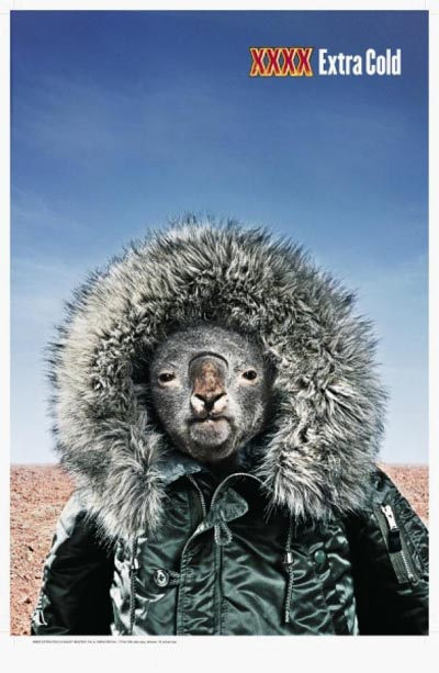 Castlemaine XXXX beer commercial - extra cold. A koala wearing winter jacket in the middle of the desert.