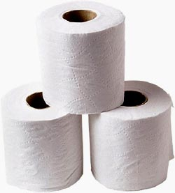 Funny Toilet Facts: Three rolls of toilet paper.