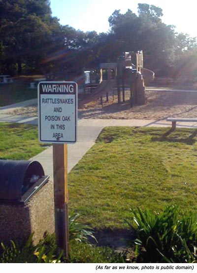 Funny warning: rattlesnake and poison oak in the area. Playground in the background