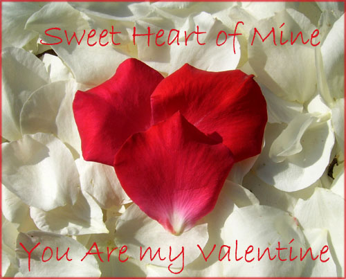 Free printable valentine cards in a modern style: Photo of rose petals forming a heart.