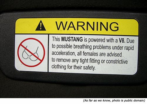 Silly signs: Funny warning sign: Remove any restrictive clothing. Picture of bra!