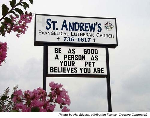 Silly signs. Funny church signs: St. Andrew's Evangelical Lutheran Church: Be as good a person as your pet believes you are!