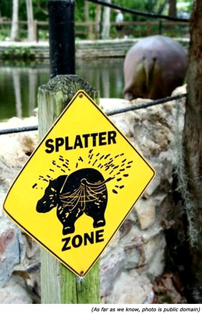 Funny zoo signs. Sign with hippo: Splatter Zone!