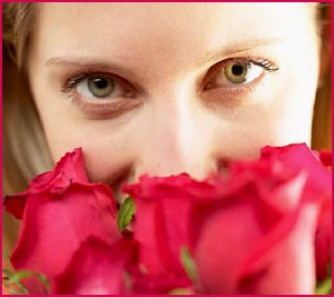 Sweet love: woman looking intense over a buket of roses. Woman smelling the roses.