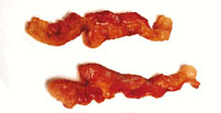Funny unusual gifts: picture of two slices of bacon.