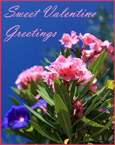 Free Valentine pictures: Pretty pink flowers agains a clear blue sky.