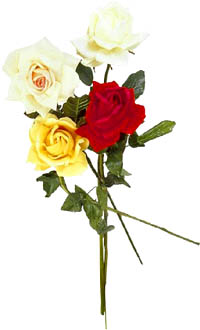 Rose bouquet with white, yellow and red roses.