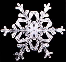 Weird but true facts about eskimos and snow: Old photo of snow flake.