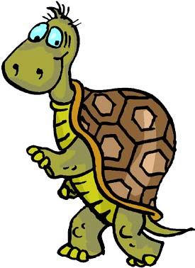 Strange facts: Funny drawing of turtle.