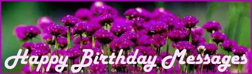 Happy birthday messages: Picture of pretty purple flowers.
