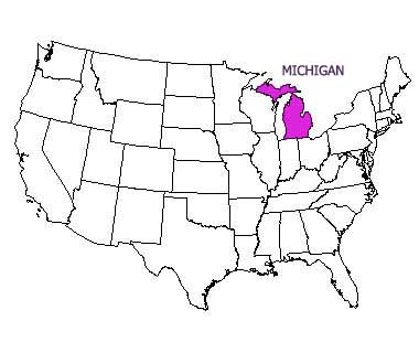 USA map with Michigan highlighted