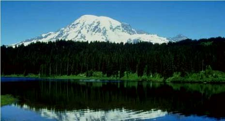 Washington nickname: The Green Tree State - picture of pines and mountain