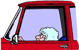 Funny driving jokes: Old woman in car is too small to look out the window.