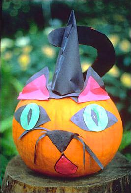 Funny cat quotes pumpkin cat