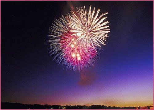 Pretty firework in the night sky.
