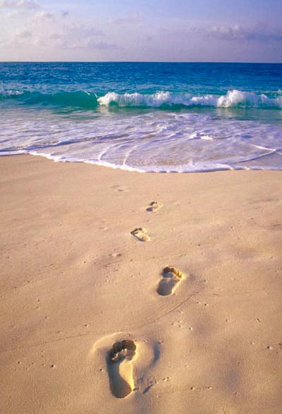 Simple life truths: footprints in the sand on the beach.