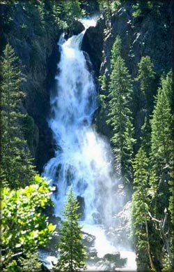 Picture of wild waterfall.