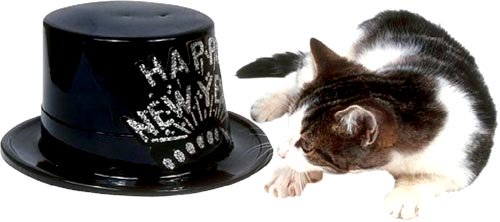 Sweet New Year: Cute cat lying next to black happy New Year hat.