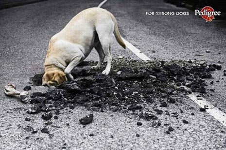 Pedigree commercial - for strong dogs, dog digging in road, very funny ads