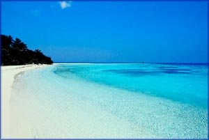 Positive quotes: Photo of tropical beach. A tropical paradise.