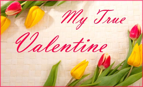 Colorful Valentines Photo card with red and yellow tulips and short Valentine greeting.