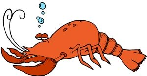 Funny drawing of lobster as a symbol for Maine.