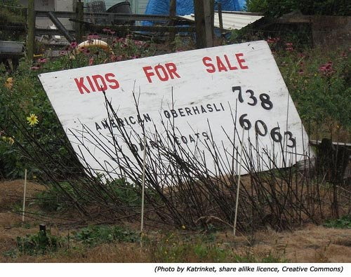 Hilarious Signs and funny sales signs: Kids for Sale