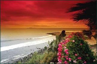 Beautiful tropical beach paradise in an orange sunset.