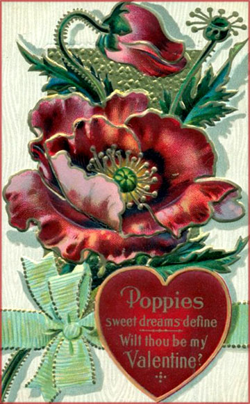 Dark red poppies on vintage Valentines Day picture.